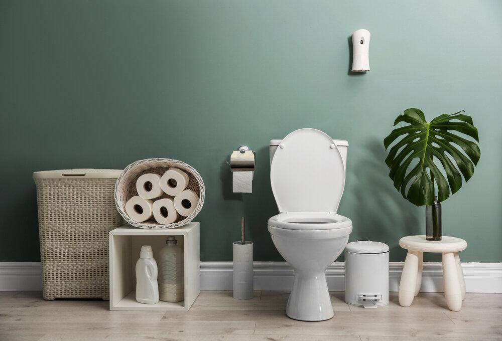 best budget toilet 2021