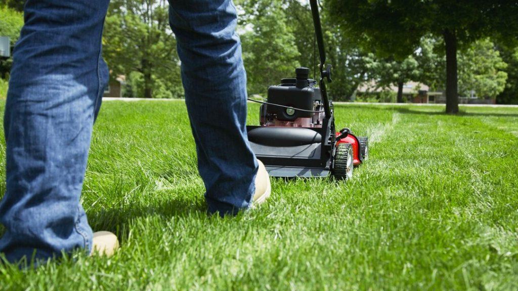 best value self propelled lawn mower