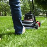 best budget self propelled lawn mower