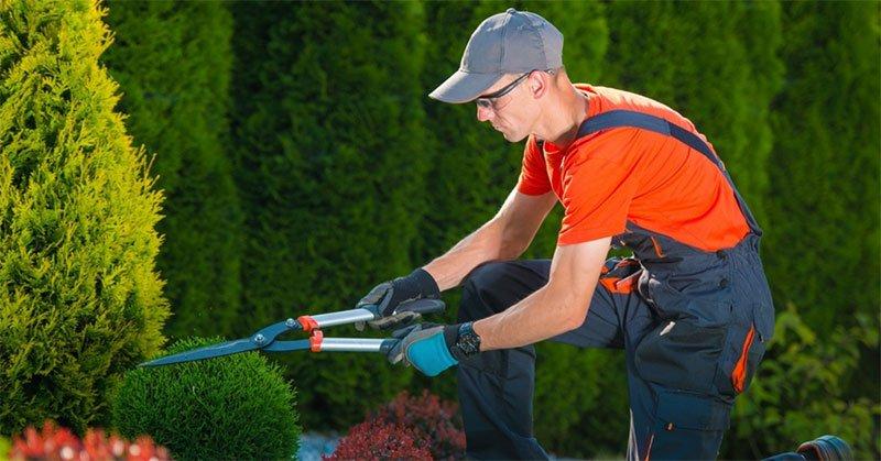 Gardening Costs
